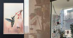 blog colibri felicidad